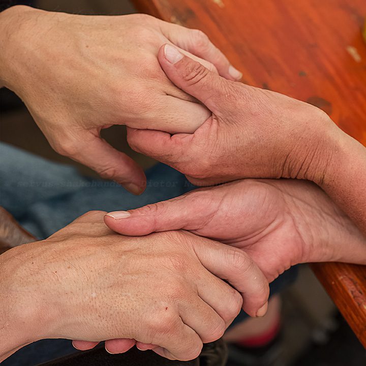 servus-shakehands Integration Disabled People