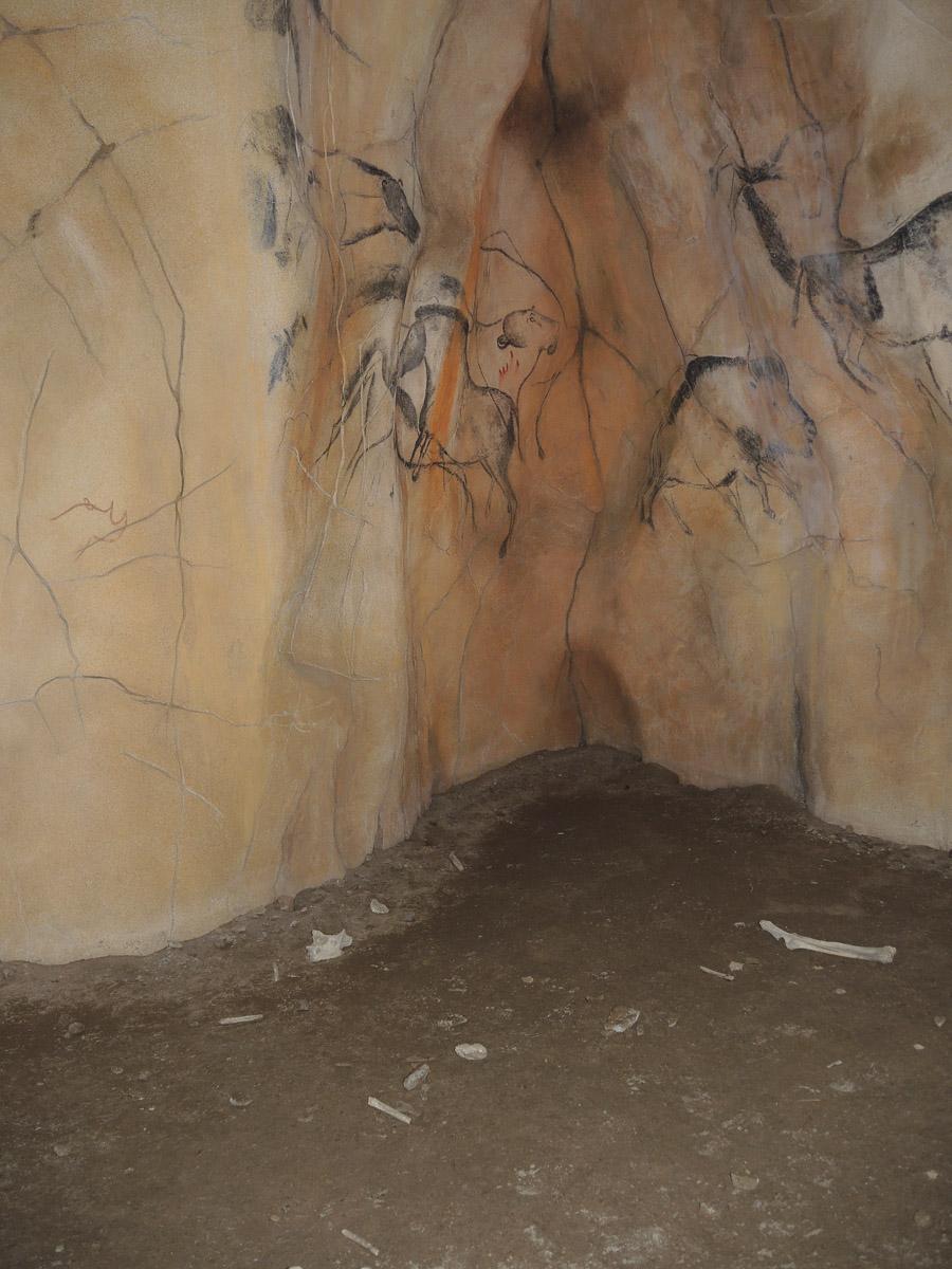 Nationalparkzentrum Falkenstein - Steinzeithöhle